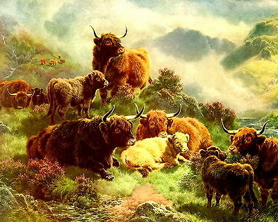 Art Print Scottish Highland Cattle Kyloe Shaggy w Long Horns Cow Calf Glen Loch