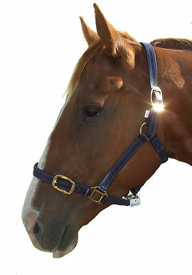 PVC Halter/headstall with brass fittings - Navy Blue