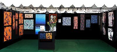 Pro Panel Art Booth Display Package - LIKE NEW!!
