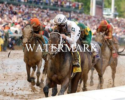 2016 Kentucky Derby Winner 8 x 10 8x10 GLOSSY Photo Picture IMAGE #4 Nyquist