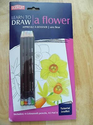Dewent Learn to Draw a Flower with 4 Coloursoft Pencil A5 Pad & Tutorial Leaflet