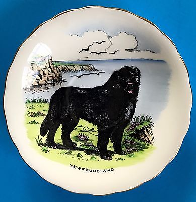 Newfoundland Dog Collector Plate ~ 5-1/2 In Diameter