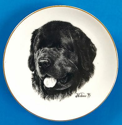 Newfoundland Dog Collector Plate