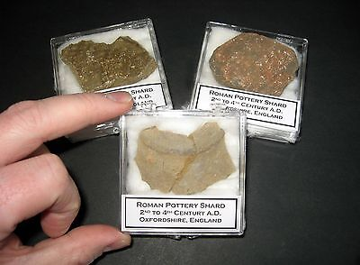 Roman Empire Pottery shard in display case 3rd century 1700 yrs old Large piece