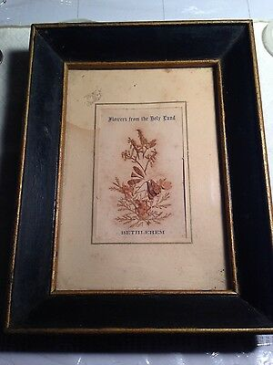 "Framed ""Flowers from the Holy Land"" Bethlehem pre 1948"