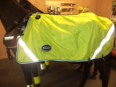 """""""ideal Equestrian"""" Horse/pony  Fluorescent Driving Rug"""