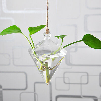 Hanging Vase Hanging Terrarium Hanging Glass Planter Clear Flower Container