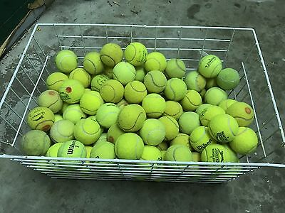 Used Tennis Balls For Sale