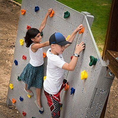 10 Assorted Rock Wall Hand Climbing Kids Holds with Hardware Screws And Rocks In