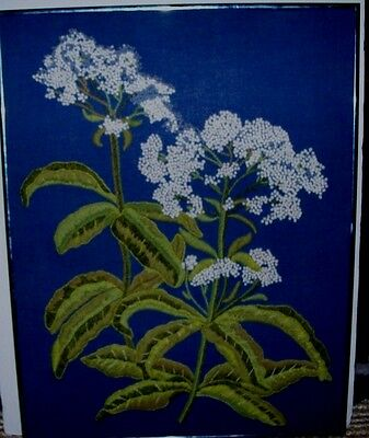 """Vintage Hand Made Crewel Embroidery Needlework Queen Ann's Lace Framed 18"""" x 23"""""""