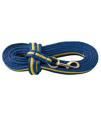 Training/Lunge Line for in hand schooling 5.5M long soft webbing blue/yellow