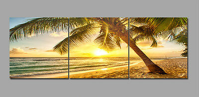 "3Parts 16x16""Sea Palm Tree-Home Wall Decor Art Printed on Canvas""no frame""225"