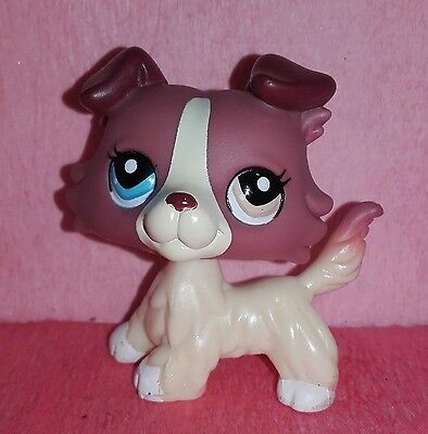 authentic LPS 1262 DOG COLLEY COLLIE littlest petshop PET SHOP chien hasbro