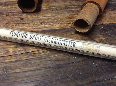 BRT Vintage Antique Floating Dairy Thermometer Made in Germany Milk Farm Rare