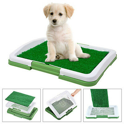 Puppy Pad Holder Training Indoor Pee Potty Trainer Litter Box Synthetic Grass