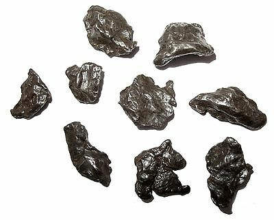 Sikhote Alin Iron meteorite individual Russia Fell 1947 small in display case