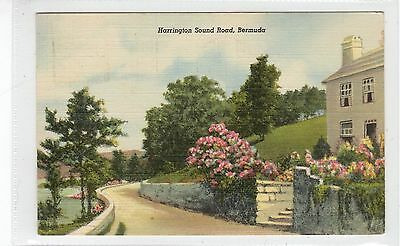 HARRINGTON SOUND ROAD: Bermuda postcard (C27568)