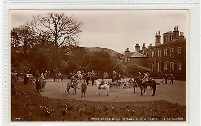 THE DUKE OF BUCCLEUCH'S FOXHOUNDS AT BOWHILL: Selkirkshire postcard (C27612)