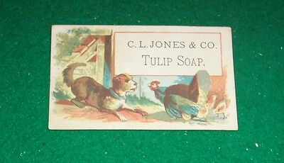 "VICTORIAN TRADE CARD -  ""C. L. JONES & CO.  -  TULIP SOAP."" -  3.5"" x 2"" in size"