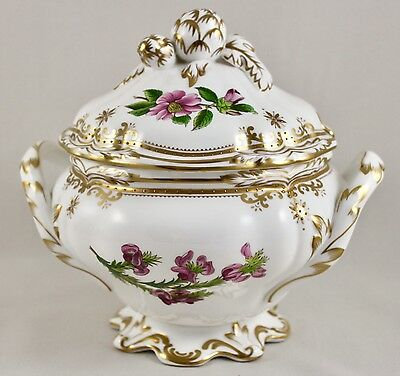 Stunning Spode China Stafford Flowers England Y8519 Sauce Tureen & Cover 1St
