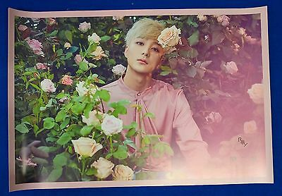 Roy Kim - Blooming Season Official Unfolded Posters New K-POP