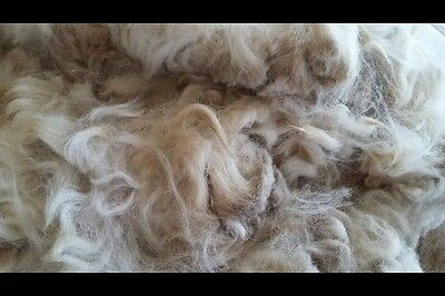 Alpaca Fleece White 450g