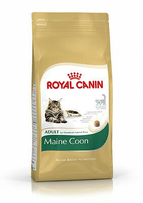 Royal Canin Adult Maine Coon
