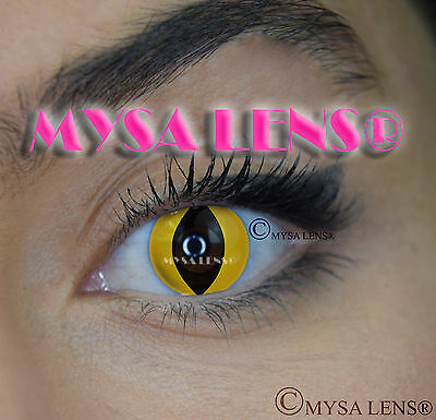Crazy Coloured Contact Lenses Kontaktlinsen color contact lens Yellow Cat