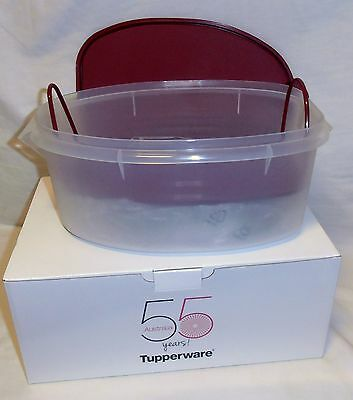 BNIP TUPPERWARE bring back Flavour Saver (postage to MELB is $12.00) RRP $86