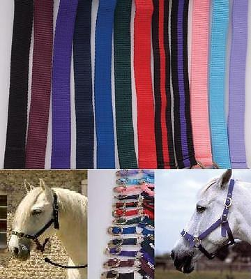Rhinegold Adjustable Head Collar, Foal, Shetland, Pony, Cob, Horse, All Colours
