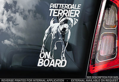 Patterdale Terrier - Car Window Sticker - Dog on Board Club Art Print Sign Gift