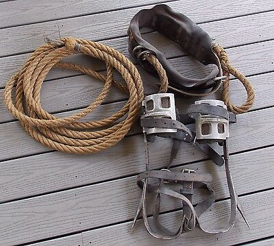 Mallory Adjustable Climbing Spurs Spikes Gaffs & Buckingham Belt With Rope