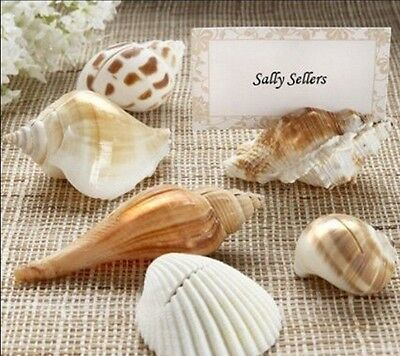 (24) Shells by the Sea Authentic Shell Placecard Holders & Matching Placecards