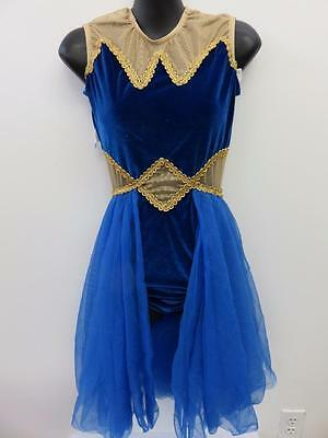 Dance Costume Large Adult Royal Blue Gold Egyptian Dress Ballet Solo Competition