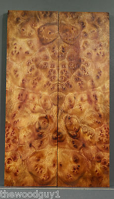 s4145  -  Large Scales   CAMPHOR  BURL - Mini Lumber / Craftwood - Kiln Dried