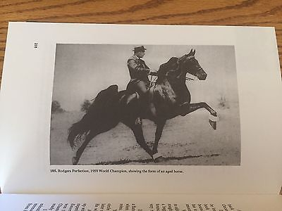 Care And Training Of The Tennessee Walking Horse By Joe Webb, Book, 3Rd Edition