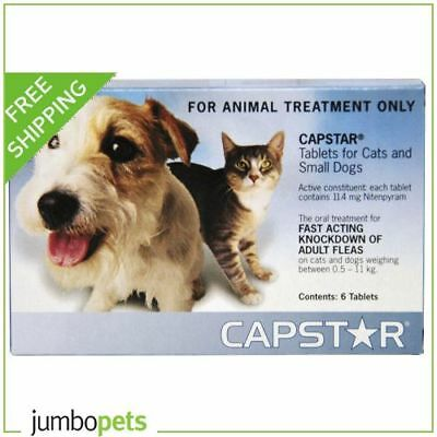 Capstar for Cats and Small Dogs 0.5-11kg