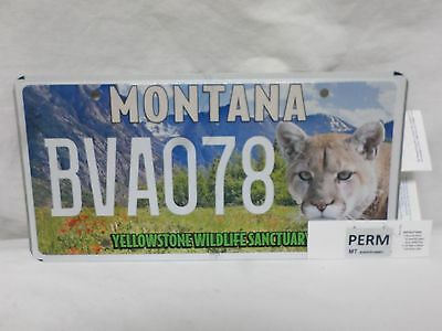 "Mint Montana Specialty/sponsored Plate ""yellowstone Wildlife Sanctuary"" Bva078"