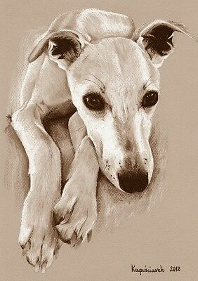 WHIPPET   ***  LEVRIER * WINDHUND   * A4  Limited  Kunst-Print 2