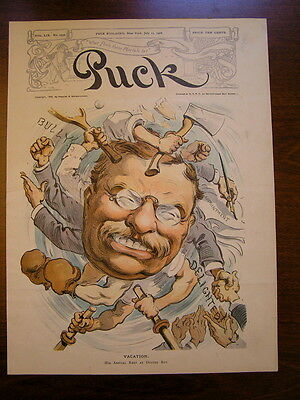 Vintage 1906 Teddy Roosevelt On Vacation Chromolithograph Published In Puck