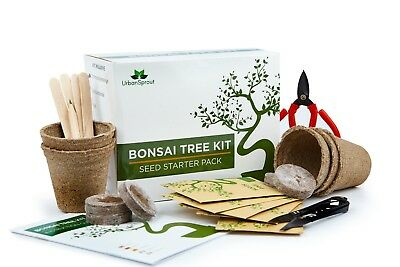 Bonsai Tree Kit  Grow Your Own Trees From Seed  Gardening Gift Box  Pruning Set