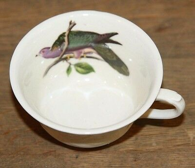 Vintage Alfred Meakin China Tea Cup England Audubon Birds of America  KINGBIRD