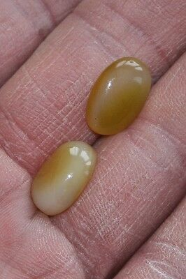 A pair of Yellow Onyx. 14 carats