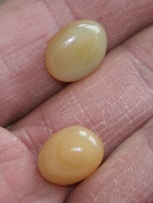 A pair of Yellow Onyx. 17 carats