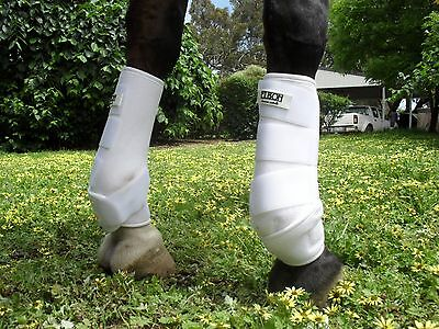 horse sports boots Full size