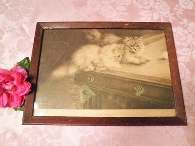 Antique Cats On Pool Table Print Picture Scratch Players Augusta Talboys Kittens
