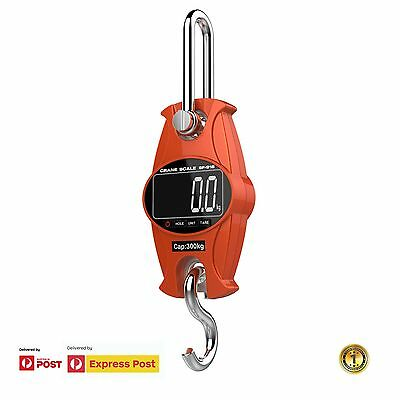 Mini Crane Digital Scale For Farm Hunting Fishing upto 300kg