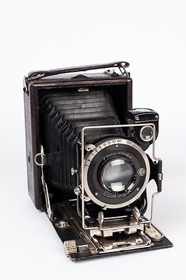 The Salex 6,5x9cm plate camera +Compur + Salexon Anastigmat f 4.5 12cm