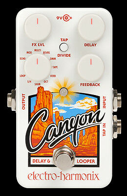 New in Box Electro Harmonix Canyon Delay Looper with AUST Power Supply