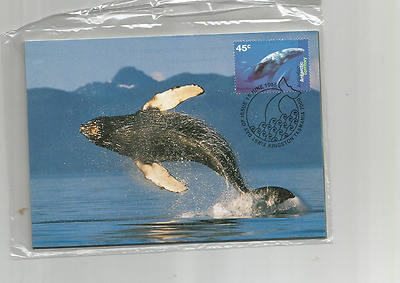 1995 Maxi Cards Aat Antarctica Whales + Dolphins Maxi Cards Inc Postage Prepaid